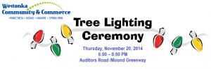 2014 WCC Tree Lighting CA 10282014
